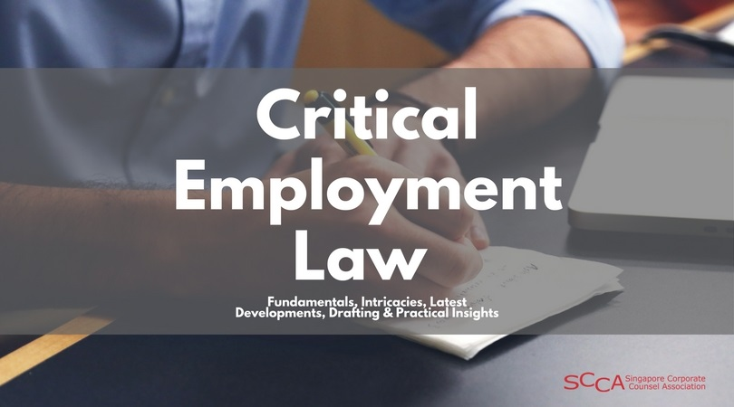 CRITICAL EMPLOYMENT LAW - Fundamentals, Intricacies, Latest Developments, Drafting & Practical Insights
