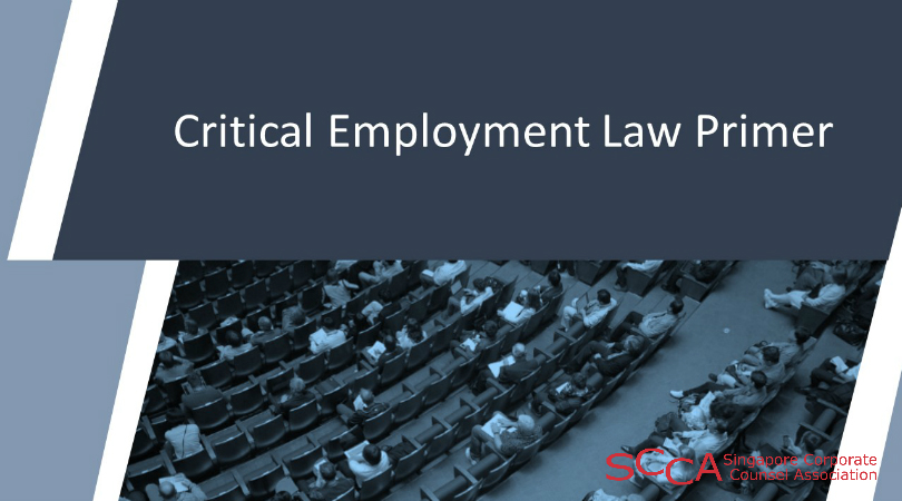 Critical Employment Law Primer  ( 2days Program)