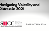 Navigating Volatility and Distress in 2021